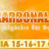 Bogatyńskie dni węgla i energii - Karbonalia 2018, FESTIWAL BOGATYNIA, Bogatynia, Bogatynia