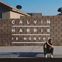 Drinking From The Bottle - Calvin Harris, Tinie Tempah